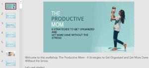 PLR.me Productive Mom Bundle Review